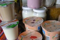 Yoghurt aus Schafmilch
